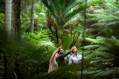 Aboriginal Heritage Walk - Royal Botanic Gardens